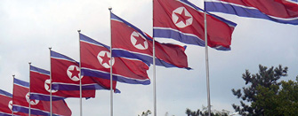 Kim Jong Un's North Korea: Why Reforms Are Risky, Why Reforms Are Possible